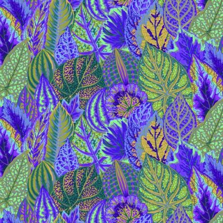 Fall 2017 coleus lavender